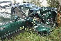 Dva zraněné si vyžádala nedělní nehoda u Cvikova, kde auto vyletělo ze silnice.