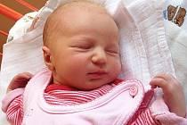 Mamince Lence Košatové se 1. srpna narodila dcera Natálka Musilová. Měřila 50 cm a vážila 3,14 kg.