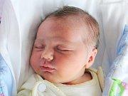 Rodičům Pavle Štěpánkové a Josefu Novotnému z Kvítkova se v sobotu 9. prosince v 15:17 hodin narodila dcera Sára Novotná. Měřila 52 cm a vážila 3,96 kg.
