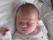 Rodičům Lence a Davidovi Kosinovým z Janova u Nového Boru se v sobotu 31. prosince v 7:34 hodin narodila dcera Jasmína Kosinová. Měřila 49 cm a vážila 3,18 kg.