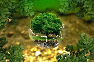 Recyklací elektra výrazně ušetřili ekosystém Země.