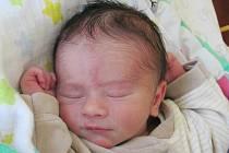 Rodičům Michaele Voříškové a Davidu Plesníkovi ze Stráže pod Ralskem se v úterý 26. ledna v 6:55 hodin narodil syn Matěj Plesník. Měřil 49 cm a vážil 3,2 kg.