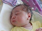 Rodičům Nikole Štěpánkové a Stanislavu Doležalovi z Jiříkova se v úterý 1.srpna v 1:56 hodin narodila dcera Izabela Štěpánková. Měřila 49 cm a vážila 3 kg.