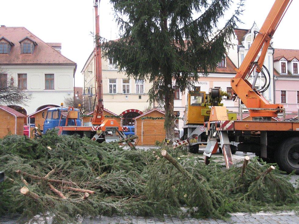 Pád stromu se obešel i bez hmotných škod. Při pádu nepoškodil ani blízký morový sloup, který nedávno prošel rekonstrukcí, ani kašnu a okolní stánky.