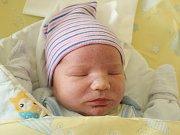 Rodičům Denise Lohrové a Jaroslavu Važanovi z České Lípy se v pondělí 9. října ve 22:28 hodin narodil syn Vojtěch Važan. Měřil 53 cm a vážil 4,03 kg.