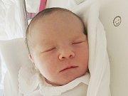 Mamince Monice Šlehoferové ze Stráže pod Ralskem se v neděli 18. června v liberecké porodnici narodila dcera Monika Havlíková. Měřila 50 cm a vážila 3,22 kg.