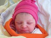 Rodičům Andree a Jaromírovi Pokorným z České Lípy se v pátek 6. ledna v 5 hodin narodila dcera Vanesa Pokorná. Měřila 50 cm a vážila 2,85 kg.