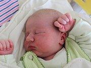 Mamince Soně Prknové z Provodína se v úterý 1. srpna v 5:45 hodin narodil syn Jakub Prkno. Měřil 51 cm a vážil 3,93 kg.
