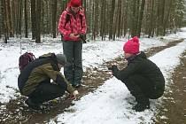 Speciálně vyškolení dobrovolníci vyhledávají stopy, trus a srst, působí také jako prevence před pytláky
