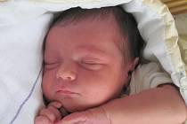Mamince Michaele Brejchové z České Lípy se ve středu 16. října v 17:09 hodin narodil syn Šimon Brejcha. Měřil 51 cm a vážil 4,07 kg.