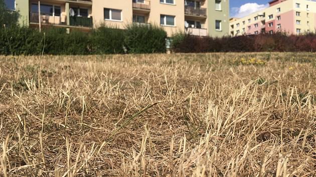 Opadávající listí a seschlá tráva, takový pohled se poslední týdny naskýtá téměř všem na Českolipsku.