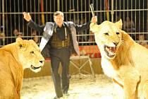 Cirkus Bob Navarro King.