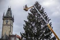 Příběh sedmdesátiletého smrku z českolipské Dubice, který letos ozdobil Staroměstské náměstí v Praze, se uzavře o víkendu v zoologické zahradě.