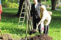 Pětašedesáté výročí návratu lidických žen z koncentračního tábora  Ravensbrück do ČSR si v sobotu připomněli lidé v Novém Boru.