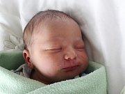 Mamince Kristíně Hervertové z České Lípy se ve středu 10. ledna ve 21:16 hodin narodil syn Tomášek Hervert. Měřil 50 cm a vážil 3,27 kg.