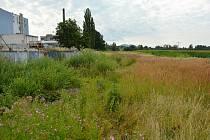 Na pozemcích mezi vlakovým nádražím, areálem skláren Crystalex a silnicí I/9 v Novém Boru má vyrůst menší průmyslová zóna. Současný stav v severní části určené lokality.