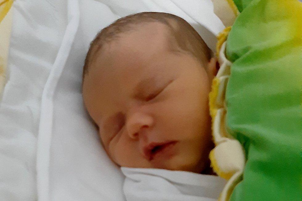 Rodičům Lence a Honzovi Jelínkovým z Nového Boru – Arnultovic se ve středu 27. ledna ve 12:59 hodin narodila dcera Nelinka Jelínková. Měřila 50 cm a vážila 3,13 kg.