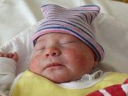 Rodičům Kristýně Hriadelové a Martinu Cenknerovi z Nového Boru se ve středu 28. června v 16:43 narodila dcera Natálie Cenknerová. Měřila 48 cm a vážila 3,06 kg.
