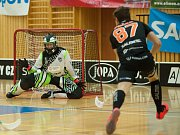 FBC Česká Lípa – Bulldogs Brno 3:5.