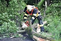 Popadané stromy po týdnu opět zaměstnaly hasiče po celém Libereckém kraji.
