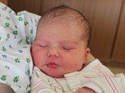 Rodičům Tereze Jánské a Janu Psotovi z Provodína se ve čtvrtek 8. února v 8:14 hodin narodila dcera Nela Psotová. Měřila 47 cm a vážila 2,66 kg.