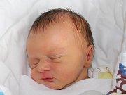 Rodičům Vladimíře a Lukášovi Markgrafovým z Nového Boru se v sobotu 16. září v 18:01 hodin narodil syn Tobiáš Martin Markgraf. Měřil 49 cm a vážil 3,04 kg.