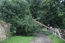 Dráty elektrického vedení strhl ve čtvrtek večer strom, který bouře vyvrátila v Oknech nedaleko Doks.