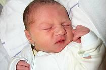 Mamince Monice Jeřábkové z Pertoltic pod Ralskem se 28. března v 18:28 hodin narodil syn Petr Šťastný. Měřil 48 cm a vážil 3,09 kg.