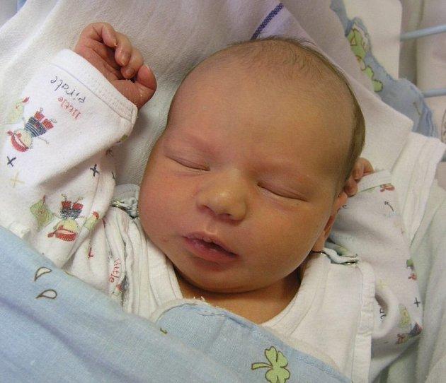 Mamince Lucii Líbánkové z Jestřebí se 6. prosince ve 14:01 hodin narodil syn Vojtěch Havlík. Měřil 51 cm a vážil 3,55 kg.