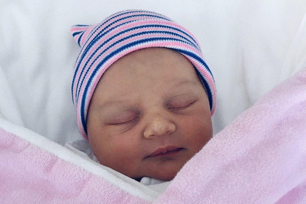 Rodičům Michaele Cibulkové a Lukáši Nešporovi z České Lípy se v pátek 8. ledna v 9:16 hodin narodila dcera Anna Nešporová. Měřila 49 cm a vážila 3,26 kg.