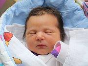 Rodičům Michaele a Jiřímu Pilským z Nového Boru se v úterý 28. listopadu v 16:07 hodin narodila dcera Marika Elizabet Pilská. Měřila 49 cm a vážila 3,61 kg.