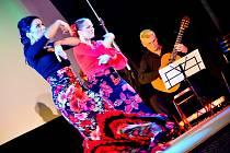 La Noche Flamenca Večer v rytmu flamenca.