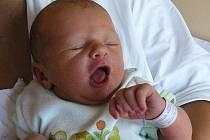 Rodičům Jitce Janotové a Karlou Švejdovi z České Lípy se 13. července ve 20:58 hodin narodila dcera Nela Švejdová. Měřila 50 cm a vážila 3,50 kg.