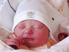 Mamince Markétě Novotné ze Žandova se 16. února ve 23:51 hodin narodila dcera Tereza Novotná. Měřila 49 cm a vážila 3,05 kg.