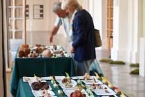 Českolipské muzeum pořádá 22. - 24. září tradiční výstavu hub.
