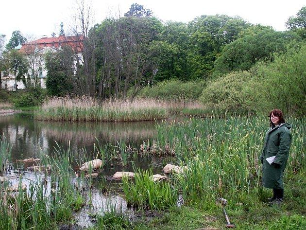 Do mokřadů v Jablonném v Podještědí o prvním květnovém víkendu přijeli pomáhat dobrovolníci ze všech koutů republiky.