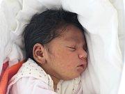 Rodičům Evě Pražienkové a Josefu Cinovi z České Lípy se ve středu 11. dubna ve 14:17 hodin narodila dcera Vanesa Cinová. Měřila 50 cm a vážil 3,39 kg.