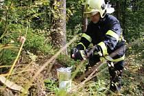 Ke cvičnému zásahu u požáru lesa vyrazilo k vodnímu dílu Naděje osm hasičských jednotek.