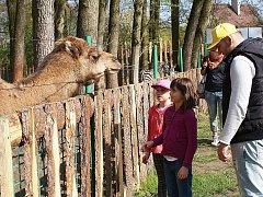 Zoopark Berousek v Doksech, ilustrační foto.