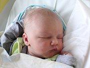 Rodičům Michaele Freierové a Petru Šimčíkovi z Mimoně se v neděli 9. prosince ve 23:38 hodin narodil syn Michael. Měřil 51 cm a vážil 3,38 kg.