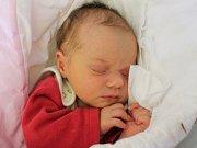 Rodičům Kristýně Kaprasové a Františku Schmiedovi z České Lípy se v úterý 6. listopadu v 7:00 hodin narodila dcera Viktorie Schmiedová. Měřila 48 cm a vážila 3,03 kg.
