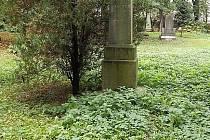 Nyní zanedbaný hrob J. J. Kaliny.