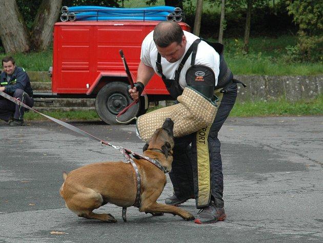 Ukázka výcviku psů pod vedením zkušených kynologů ze Slovanky v České Lípě byla jedním z hlavních lákadel víkendového Loučení s létem ve Volfarticích.