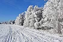 15 centimetrů sněhu ještě potřebují běžkaři na Polevsku, aby mohli začít se strojovou úpravou stop pro nejen pro sobotní závod Lužická třicítka.