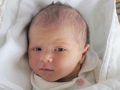 Lukáš Jonák je potomkem Romany Brázdové z Arnultovic. Chlapeček se jí narodil v úterý 28. května ve 20:35 hodin, měřil 50 cm a vážil 3,12 kg.