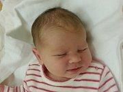 Rodičům Petře Gardášové a Tomáši Turkovi z Mimoně se v úterý 6. prosince v 8:04 hodin narodila dcera Anna Turková. Měřila 52 cm a vážila 3,86 kg.