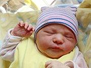 Rodičům Janě Lejskové a Francu Byrtekovi z České Lípy se v pondělí 17. července ve 12:49 hodin narodila dcera Beáta Byrtková. Měřila 52 cm a vážila 3,41 kg.
