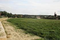 Holanský rybník nevyschl, byl vypuštěn kvůli rekonstrukci hráze. Foto od hráze směrem k obci z 28. 7. 2019.