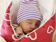 Rodičům Darině Durdoňové a Ondřeji Študentovi z Nového Boru se ve čtvrtek 18. října ve 20:07 hodin narodila dcera Sofie Študentová. Měřila 49 cm a vážila 3,42 kg.