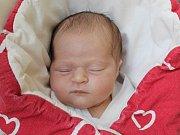 Rodičům Petře Krejbichové a Filipu Stützovi z Postřelné se v pátek 26. října v 16:58 hodin narodila dcera Veronika Stützová. Měřila 47 cm a vážila 3,08 kg.
